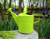 WATERINGcanLOVE / WaTeRiNG CaNs; GaLVaNiZeD / by Vicki @More Powerful Beyond Measure
