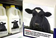 Dairy Kills