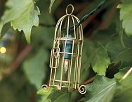 Bird Cages and Wire Cloche  / There is something charming about bird cages and wire cloches.  What might you place inside!  Is it special, are you showcasing, does it bring you joy? / by Celebrating Style at Home (Linda Burt)