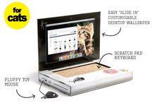 Catget / cat geek / Mon chat est un geek / Pleins d'idées de cadeaux pour vos chatounets geek :)