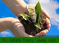 G2N Organic Business Growth & Money Saving