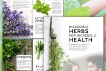 Incredible herbs for Incredible Health / Packed with over 60+ body loving herbs, their health benefits, growing tips & uses - Download your copy FREE today! :)