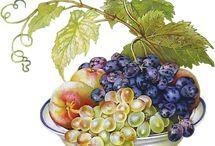 Grappes raisin