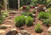 Garden Ideas  / Gardens