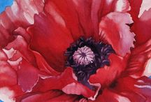 Poppies and Poppy Paintings