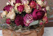 flores secas y/o preservadas