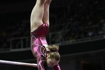 Gymnastics Turnsters