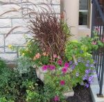 Flower Container Design Ideas
