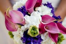 Wedding / by DeeDee McPhail