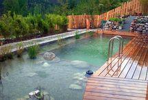 Schwimmbad/-Teich