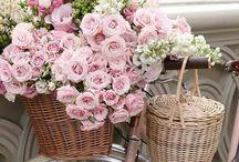 Virágos bicikli