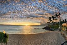 Maui No Ka 'Oi / Flowers, food, activities, fun from the isle of Maui, Hawaii. / by Becky Hejka