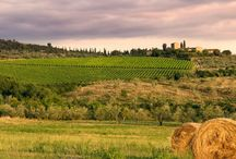Charming Tuscan Villas / Natural Retreats are proud to now offer amazing self catering villas and houses in beautiful Tuscany.