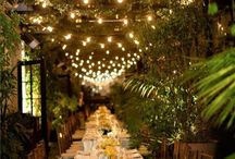 Party ideas / Planning  / by Pam McCarty