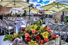 Sombrillas / Jardín con sombrillas es una elección muy popular y luce mucho en un día soleado.