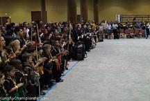 Orlando '11 ICMAC / 2011 Orlando International Chinese Martial Arts Championship at Gaylord Palms Hotel & Resort