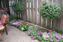 All about garden