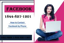 facebook toll free number usa