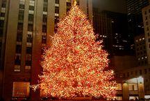 oh christmas tree oh christmas tree!!!! / by Lauren Jones