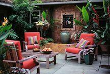 Backyard / by Kelly Rojas