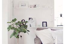 Interior Color-White
