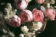 Roses...my favorite / by Kim Sewell