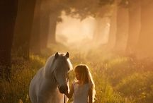 Koně focení