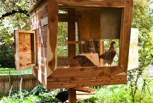 Chickies / Chickies en hun huisjes