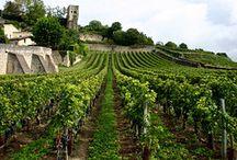 French wines from l'Occitanie region.