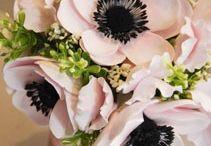 ❤ flowers