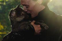 hiddleston