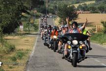 Harley & bikers / Run, rallies, bikers and good vibrations