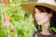 gardening/outdoor / by Emily LaDuke