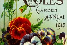 Vintage Seed Packets and Catalogs / The Vintage Art of Garden Advertising