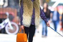 Fur-sure! / by Blueprint for Style