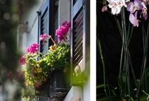 Home / architettura, interior design e decorazione casa