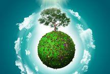 Környezetbarát háztartás
