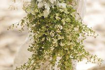 Wedding / by Traci Herrod