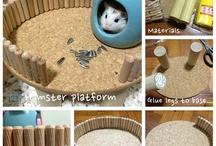 DIY Pet Accessories - Hamster