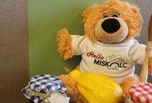 MisKa - Miskolci kalandok gyerekeknek / Travel tips for kids / Miskolci programlehetőségek, mesék, legendák, játékok ovis és alsós gyerekeknek / Travel tips for kids