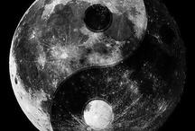 Yin Et Le Yang