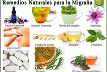 remedios naturales / by Remedios naturales