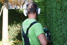 TUINONDERHOUD: VAN RAAIJEN HOVENIERS (garden maintenance) / Net als uw auto heeft ook uw tuin regelmatig onderhoud nodig. Bomen en struiken verlangen snoei, bemesting vraagt aandacht en soms moet het terras weer eens netjes worden gelegd. Wilt u vertrouwen op de kwaliteit van periodiek tuinonderhoud, kies dan voor een professioneel onderhoudsabonnement van Van Raaijen Hoveniers. Er zijn twee mogelijkheden; een vast onderhoudspakket of onderhoud op afroep.