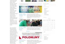 Websites / Our work
