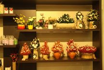 Flower Vases / Home Decor : Flower Vases in Thrissur:- Decorating a house is a passion pursued by many. Adding your own creative touch and treating the walls of your home as a canvas is what you look forward to after purchasing a house. Things like flower vases, figurines, paintings, holders, fancy trays and many more accentuate the aesthetic appeal of your home. At Kapstore we house several of these decorative pieces at minimalistic rates.