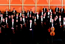 Meet Our Musicians / by Milwaukee Symphony Orchestra