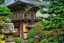Japanese Gardens / by Shibori Dragon