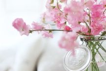 { Little beautiful things }