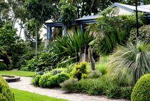 Entry garden ideas