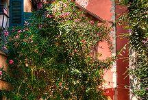 Saint Tropez Prowansja